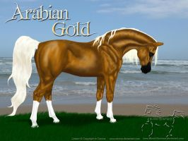 Arabian Gold 2011-01 by Blood-Huntress