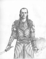 Lord Elrond by merrywanderer42