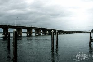Forster Pier and walk way by AdaraRosalie
