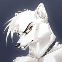 Silver by firefoxinc