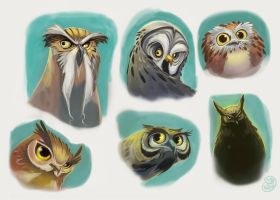 Owls by Brett2DBean