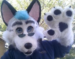 Husky mask update pic 3 by nagowteena101