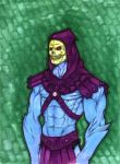 Skeletor by saburokun
