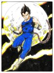 Vegeta Final Color by abe7280