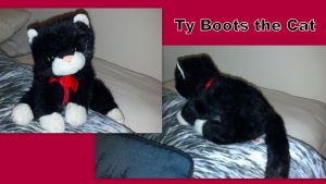 Ty Boots the cat by Vesperwolfy87
