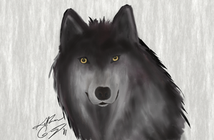 Wolf Painting by Eldunayri