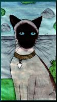 Seal Point Siamese by Raiderhater1013