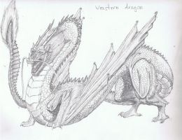 WEASTERN DRAGON :D by TheIncredibleHibby