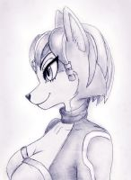Krystal profile sketch by shiroiwolf