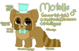 Motelle Reference Sheet by Linthium