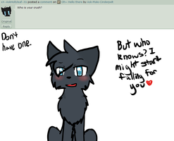 Ask 3 by Ask-Male-Cinderpelt