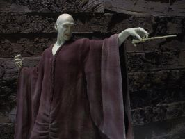 Gentle Giant Harry Potter Voldemort 1/4 Statue 2 by Minas-Tirith-Hakan
