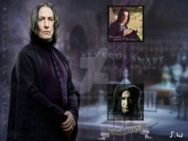 Memories of Severus Snape by Phebe76