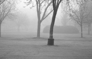 Brume #3 by Dese-M