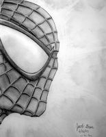 Spider-Man Head by JakeGreen
