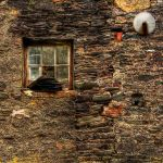 Square Window by taffmeister