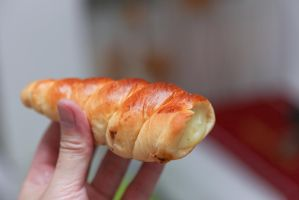 Custard roll by patchow