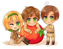 Tomato by Amphany