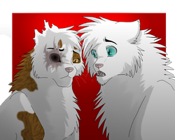 Brightheart and Cloudtail by Mana-ghostwolf