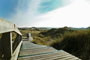 40.52 - dunes of Amrum by CorneredRing