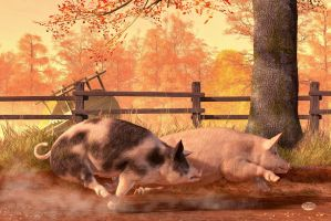 Pig Race by deskridge