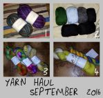 Yarn Haul - September 2016 by KnitLizzy