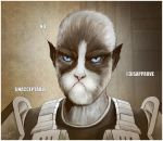 The Grumpy Cathar by Isriana