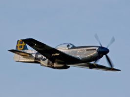 P51 Mustang Old Warden by davepphotographer