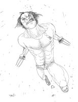 Wolverine01 by Templesmith