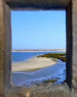 View Through a Window by sheishere