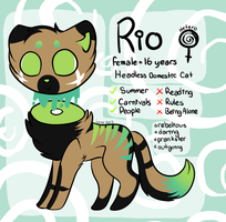 Rio by extraterrestriial