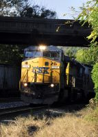 C40-8W on the Old Main Line by jhg162