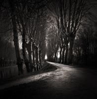A long road by zepiaf