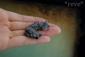 Miniature Cat Sleeping Handmade Sculpture by ReveMiniatures