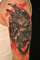 skull and raven by Robert-Franke