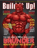 Build it Up! Cover by SymbolHero