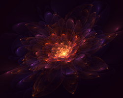 Apophysis7X 22 Flower Bloom by ParaDevik