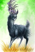 TEF: Black beauty by Spyrre