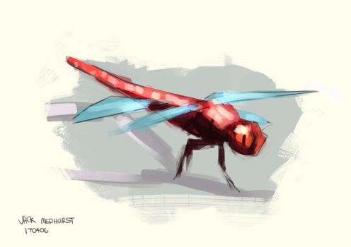 170406 - Dragonfly Study by Jakinabox