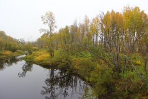 Autumn in the Urals by Ieris-Stock