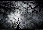 Dark Treants by magotu