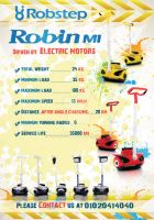 Flyer for Robin Co. Face by rananaguib