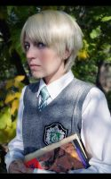The Slytherin student by Biosintes