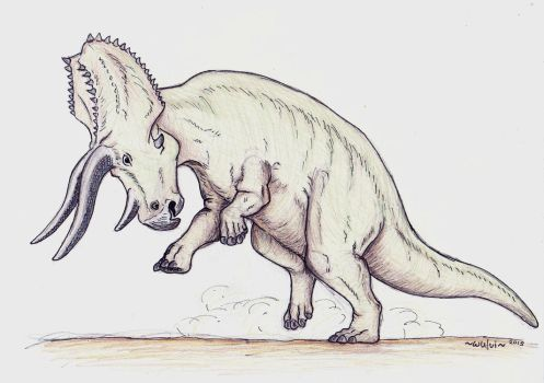 Triceratops by wulvi