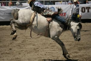 rodeo 13 by xbr0kendevotion