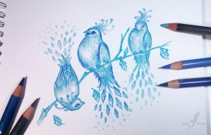 Winter birds by AlviaAlcedo