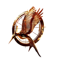 Catching fire icon by SlamItIcon