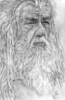 Gandalf, The Lord of the Rings by LittleDragonZ