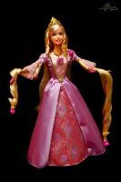 Barbie: Rapunzel 03 by avajingpretty