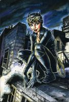 Catwoman by funrama